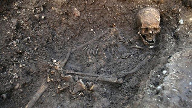Ossements de Richard III