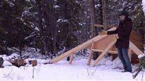Chalet disparu au Yukon