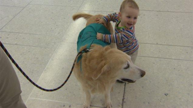 Un enfant et un chien à l'aéroport international d'Edmonton