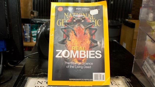 Le nouveau numéro de <i>National Geographic</i>