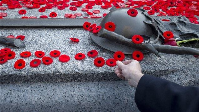 Des coquelicots déposés sur la tombe du soldat inconnu lors de la cérémonie commémorative du jour du Souvenir