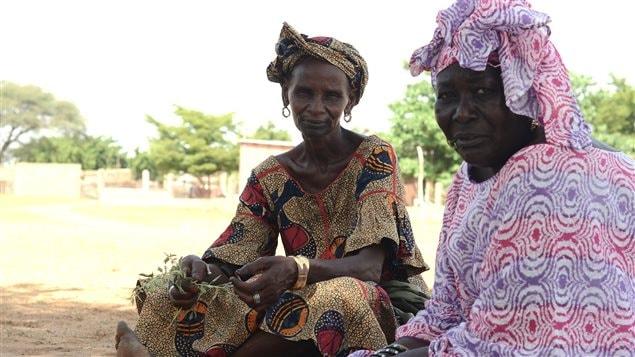 Des femmes assises sous les acacias de la grande muraille verte au Sénégal.