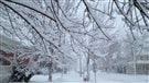 Blizzard dans les Maritimes: une tempête qui pourrait frapper fort