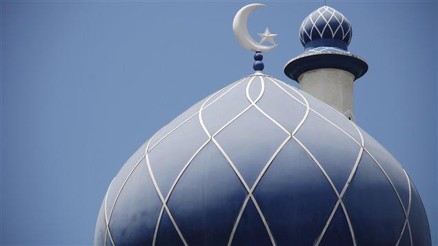Les mosquées sont d'abord des lieux de prière, mais certaines sont des lieux de revendication politique.