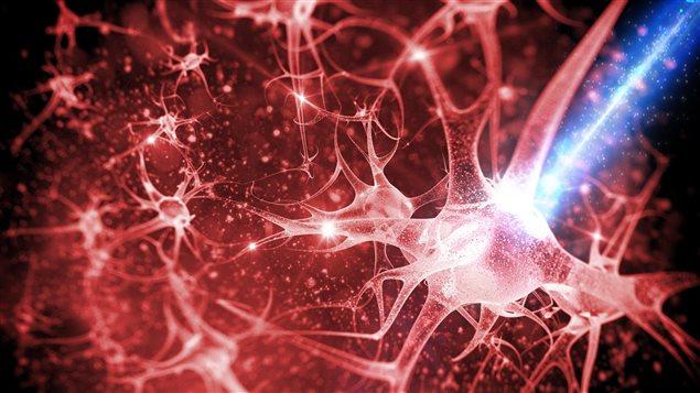 On est à l'aube de pouvoir exploiter la lumière pour développer des diagnostics précoce pour les maladies reliées au cerveau