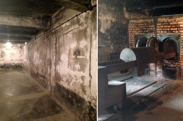 70 ans apr s auschwitz porte encore les traces de l for Auschwitz chambre a gaz