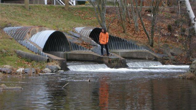 Jocelyn Rankin au bord de la rivière Sawmill