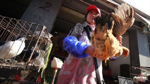 femme asiatique paris ottawa gatineau