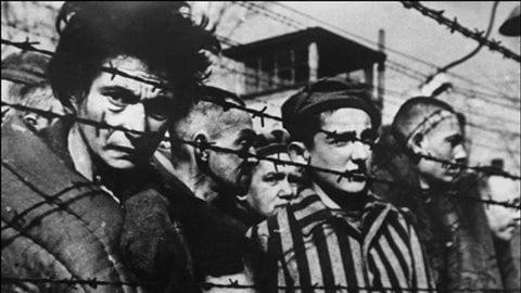 Prisonniers du camp d'Auschwitz