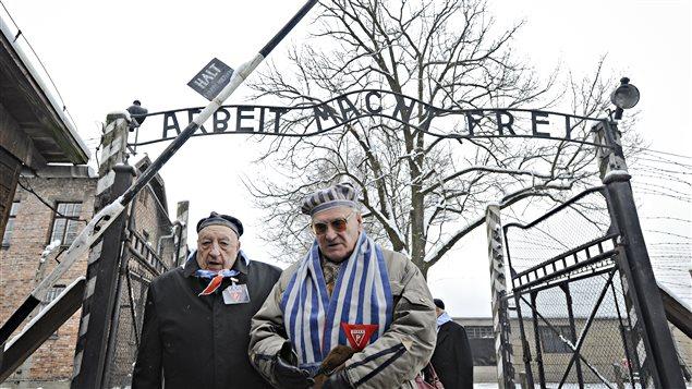 Environ 300 survivants sont présents à Auschwitz pour les cérémonies du 70e anniversaire de la libération du camp polonais.
