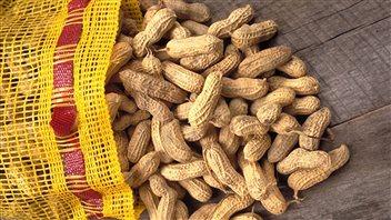 Allergies alimentaires : les écoles en font-elles trop ou pas assez?