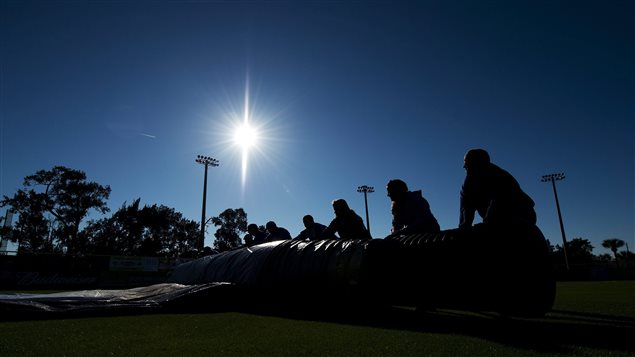 A grounds crew rolls off the tarp to get ready for baseball. The crew is in shadow behind the tarp. The sun is rising against a dark blue sky. Palm trees in the background soak it all in.
