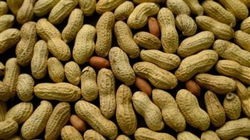 Peanuts are a leading cause of dangerous allergic reactions.