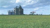 Franco-boom en Alberta