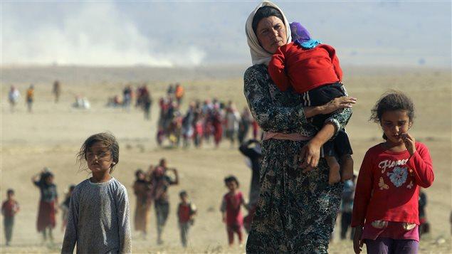 Les personnes déplacées marchent vers la frontière syrienne en périphérie de la montagne Sinjar.