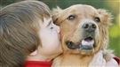 Le chien, notre maître
