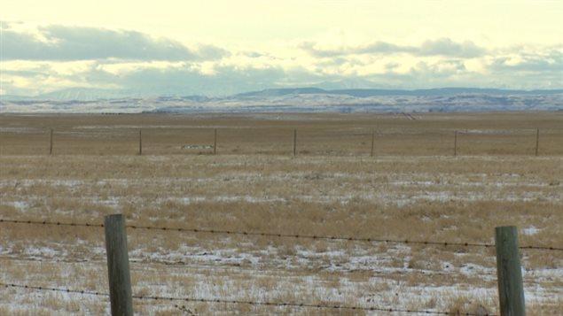 Des hivers plus chauds et plus secs pourraient avoir des conséquences néfastes pour les agriculteurs albertains
