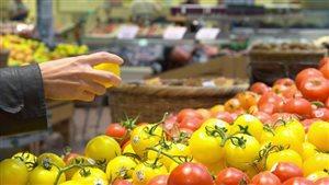 La France interdit aux supermarchés de jeter la nourriture
