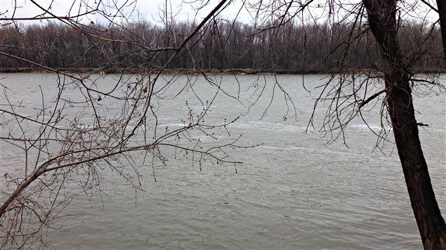 La rivière des Outaouais.