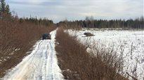 Google Maps dirige un automobiliste vers une route secondaire où il reste pris