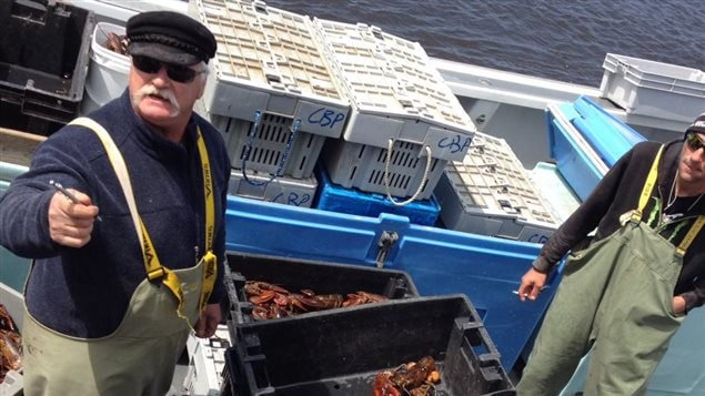 Ébarquement de homards