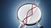 Tests génétiques et discrimination : état des lieux