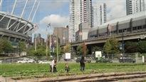 Une révolution agricole...urbaine!