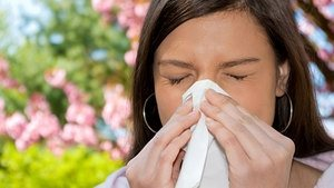 The allergy season has arrived in Canada as trees, flowers and other plants blossom. Other people suffer allergies all year long from things like cat hair (dandruff) or nuts ar shellfish, some of which can be extremely dangerous. However, new Canadian research may prevent allergy development