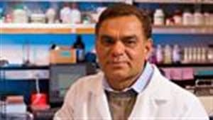 Ravindra (Ravi) Chibbar, PhD Biochemistry, PhD Plant Physiology, professor University of Saskatchewan