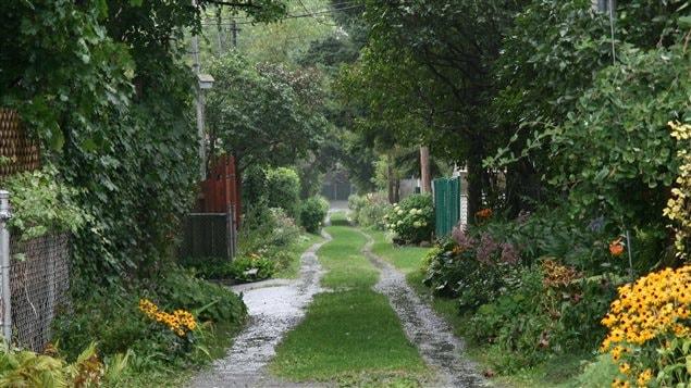 Ruelle verte située entre la 25e et la 26e avenue, entre les rues Saint-Zotique et Bélanger, à Montréal