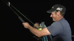 La pêche au thon récréative est permise pour une première année en Gaspésie