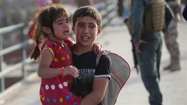 Des habitants de Ramadi fuyant les milices de l'EI arrivent à Bagdad