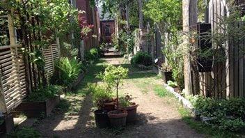 Une ruelle verte de Montréal