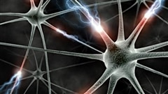 La Clinique des maladies neuromusculaires et neurogénétiques de L'Enfant-Jésus  traite des patients atteints de SLA (sclérose latérale amyotrophique) depuis octobre dernier et constate une amélioration des services offerts aux patients atteints de cette maladie.