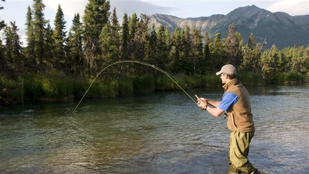 Un pêcheur de saumon en action