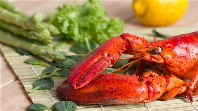 Comment choisir et cuire son homard m dium large ici - Comment cuisiner le homard ...
