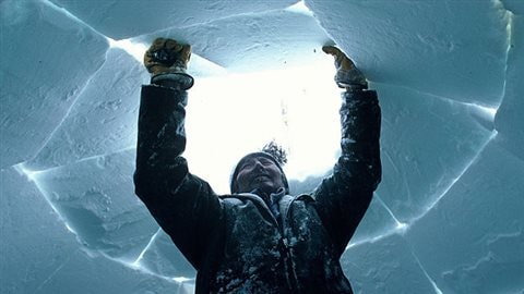 No Canadians don't live in igloos. Only 16% have ever been in one. Sometimes  though Canadians, often kids, will build them in theif backyards in winter.