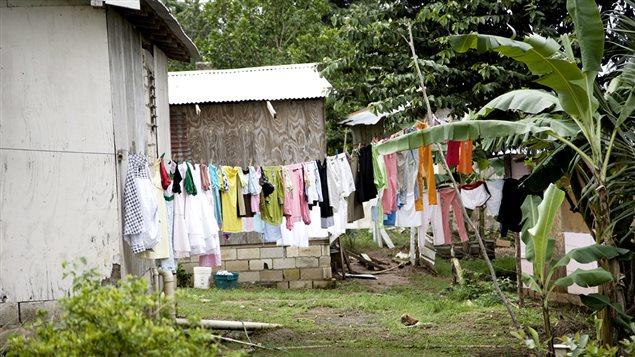 Cour derrière des maisons de village en Jamaïque
