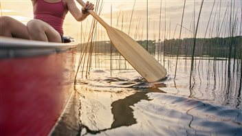 Canada, le berceau du canot