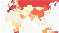Quel pays rapporte le plus de trophées de chasse au lion? La réponse en carte
