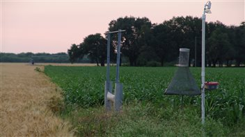 Anabat detectors monitored how bats fared in areas with cropland and natural habitat.