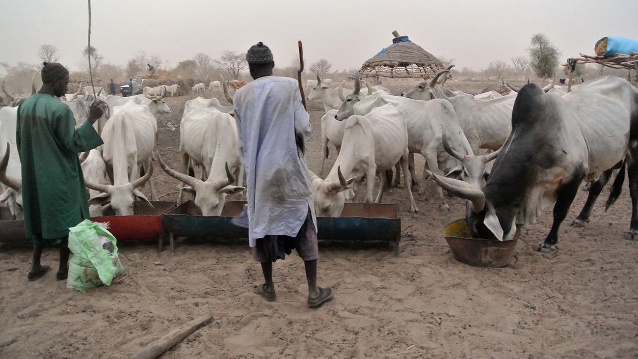 Le village est principalement constitué d'éleveurs, et de leurs employés.