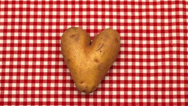 Le Festival de la patate de Notre-Dame-de-la-Paix.