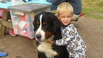 This Bernese mountain dog was saved after he fell through some ice, but he faces an early death and plenty of pain because of inbreeding. We see a little boy (maybe two or three years old) in pajamas on the right hugging a big, mainly black dog with a white stripe down his forehead. In the background is a garbage bin next to a pinic table.