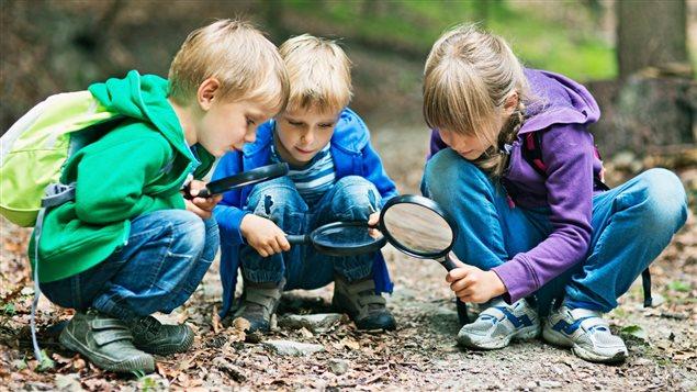 Des enfants qui s'amusent dans les bois