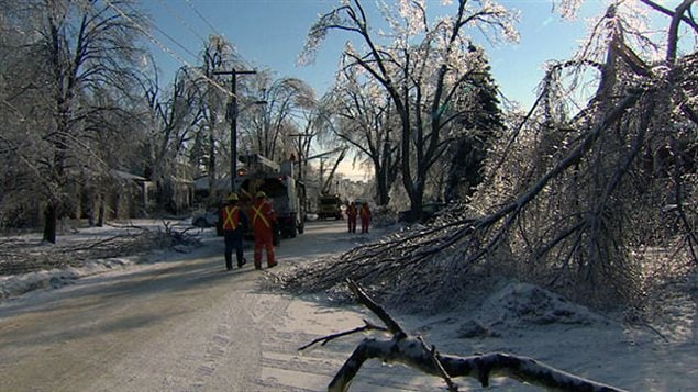 Ice storm damage in Toronto, December 2013. Abnormal weather conditions like and increase in ice storms wreak havoc on city infrastruction such as power lines, and increase clean-up costs dramatically