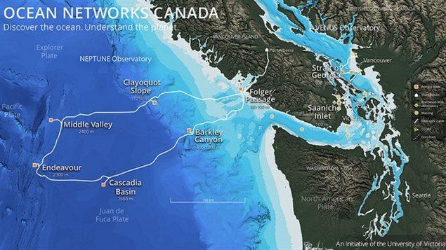 Le réseau sous-marin de câbles et senseurs Neptune, à 300 km de la côte ouest canadienne, installé par Ocean Networks Canada Photo : Ocean Networks Canada