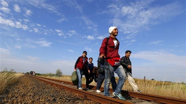 Des migrants syriens longent la voie ferrée après avoir traversé la frontière entre la Serbie et la Hongrie.