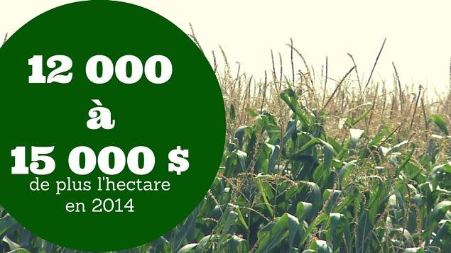 Quebec Hausse Importante Du Prix Des Terres Agricoles