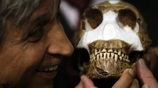 Professor Adam Habib holds a reconstructed Homo naledi. Scientists found the bones of a creature related to humans in a barely accessible cave in South Africa.